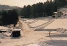 Henning 1988