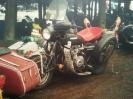 Honk 2006